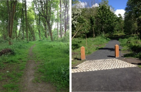 Photos showing typical differences in appearance between intervention (right) and non-intervention (left) woodlands.